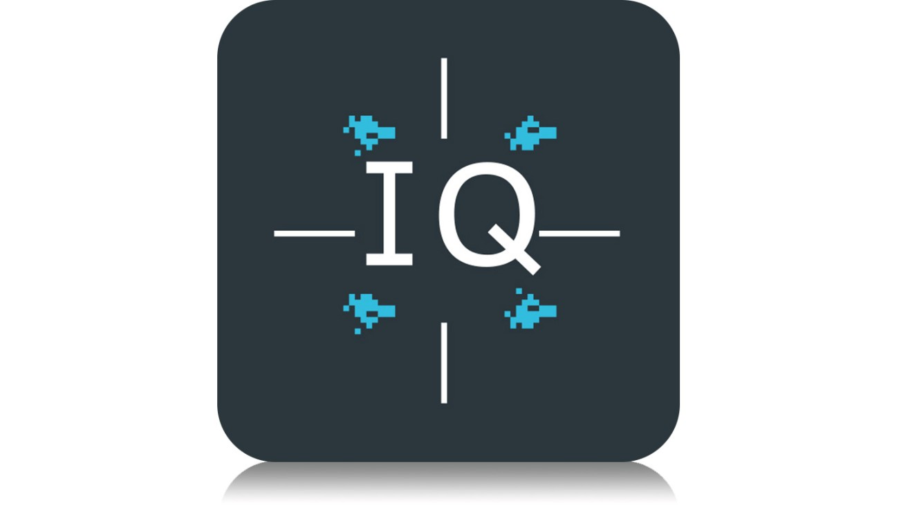 I/Q Software Interface